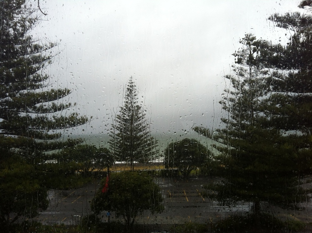 View from my window as Cyclone Lusi hits Hawkes Bay.