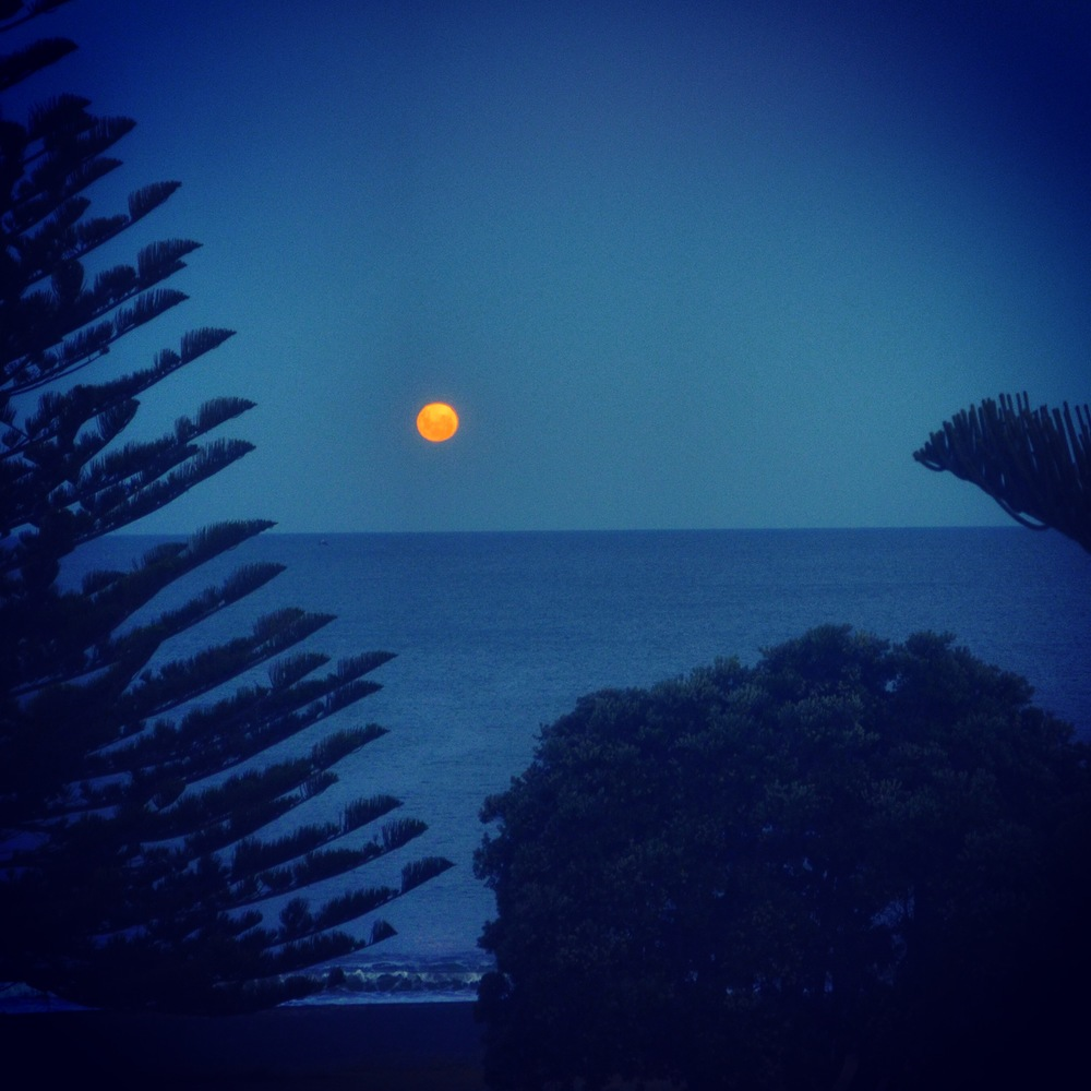 View from my bedroom Monday night: Moon rising over the Pacific Ocean in Napier, New Zealand.