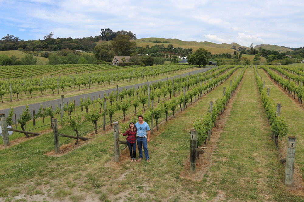 Black Barn Vineyards, Photo courtesy of John Hagen