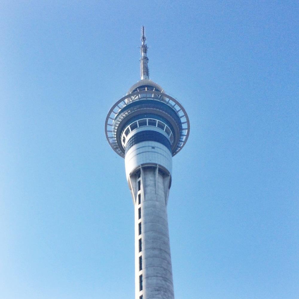 View of the Sky Tower from my hotel in Auckland.
