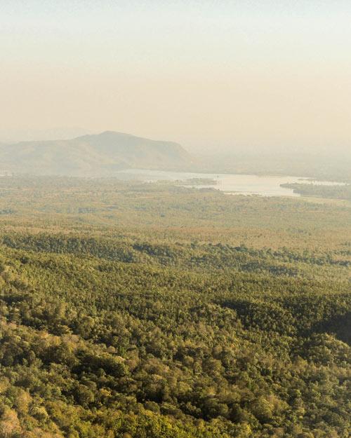 Jungle van Birma© Wilke Martens