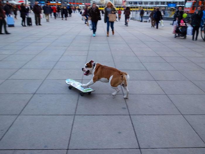 Het enorme en vlakke Alexanderplatz is uitstekend geschikt voor skateboarders.© Jan Hazevoet