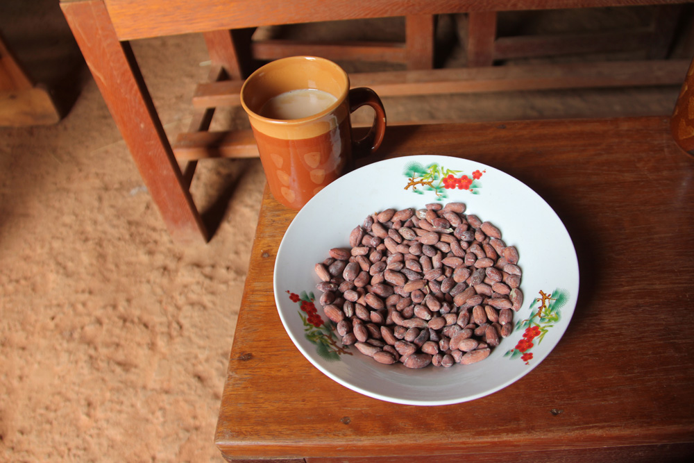 Harriet made us milk tea from their cow and roasted groundnuts from their garden.