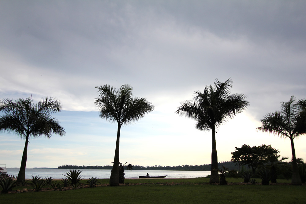 Fisherman and palm trees, Lake Victoria