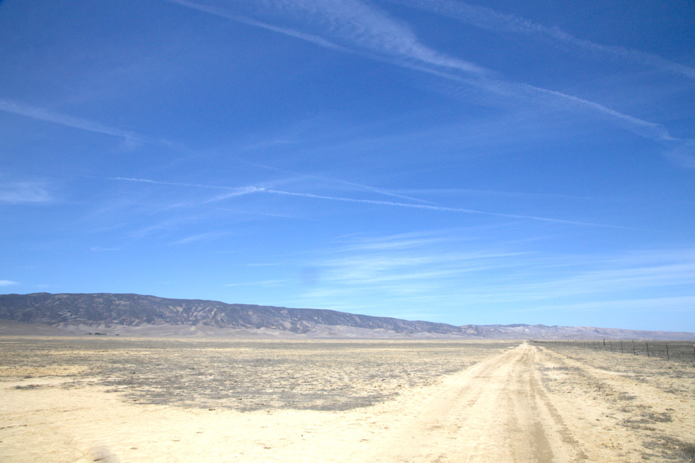Carrizo plains