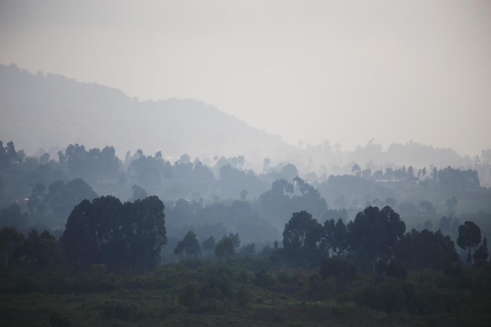 Congolese landscape