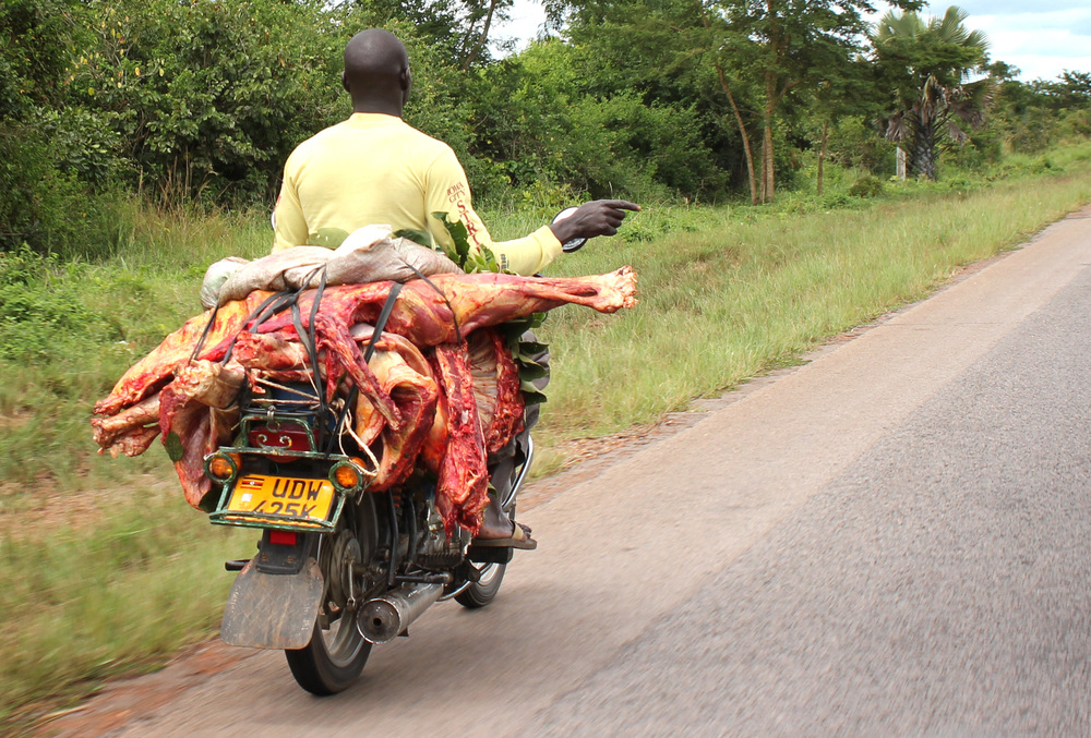 fresh meat on a boda