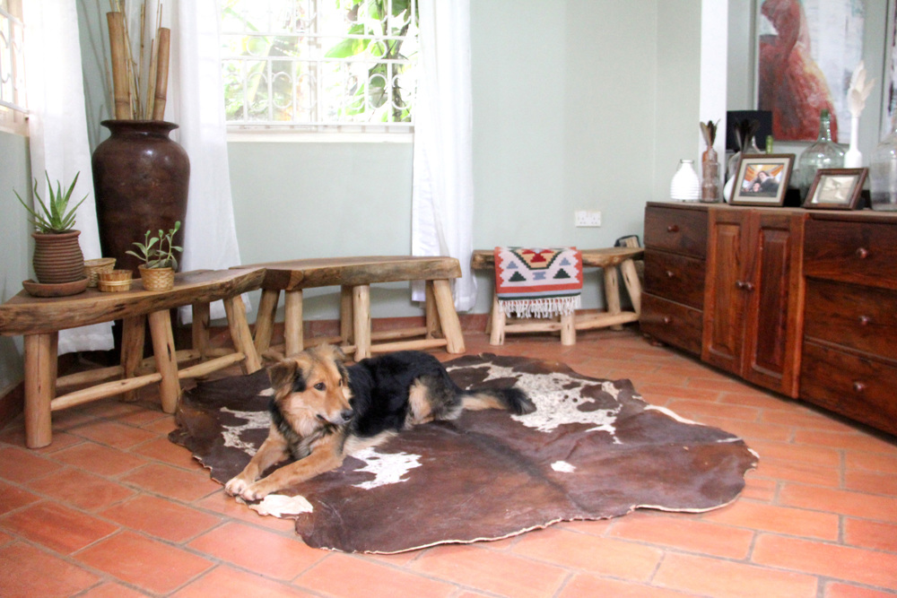 entryway, cow hide rug