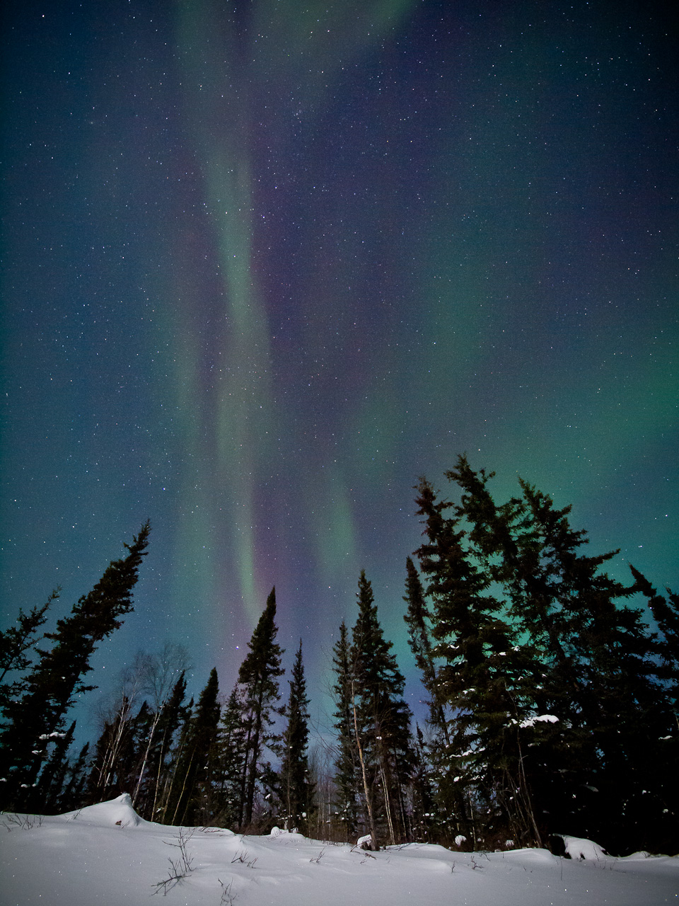 Nigel Fearon Photography | nigelfearon.ca