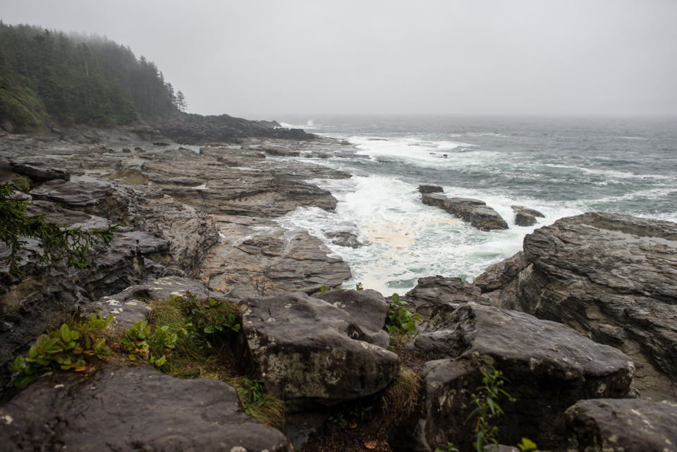 Nigel Fearon Photography | The West Coast Trail-9.jpg
