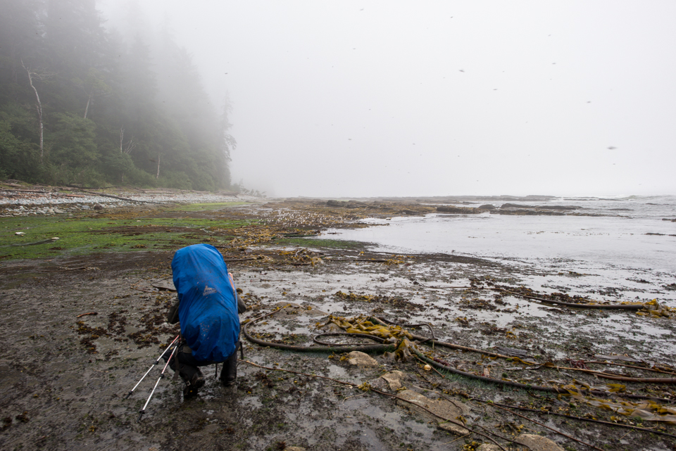 Nigel Fearon Photography | The West Coast Trail-14.jpg