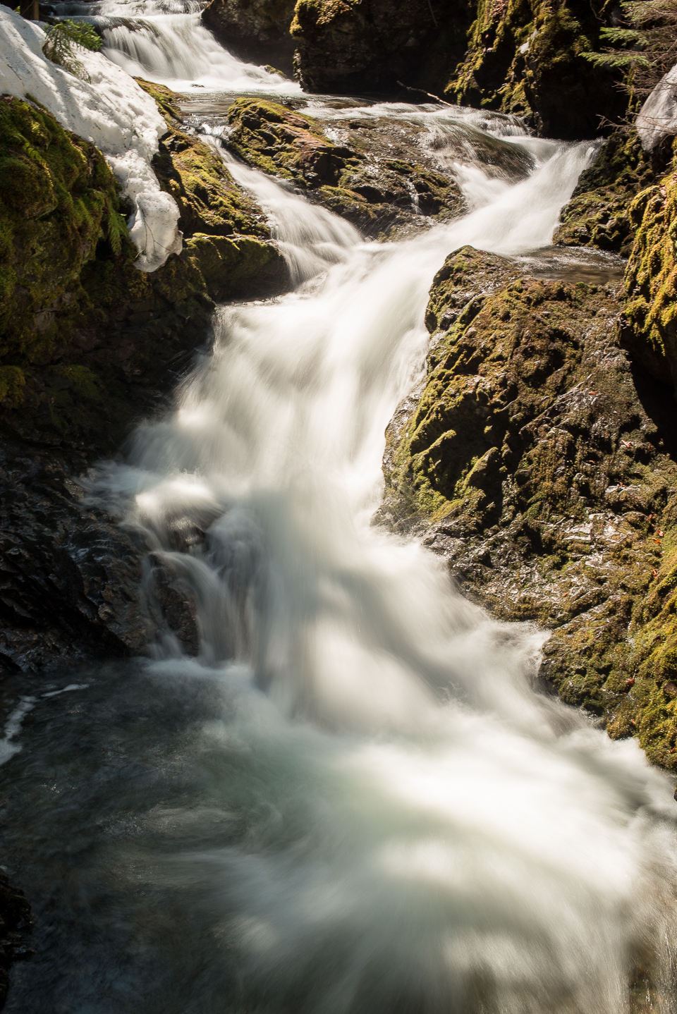 Nigel Fearon Photography | Fundy National Park Waterfalls-3.jpg