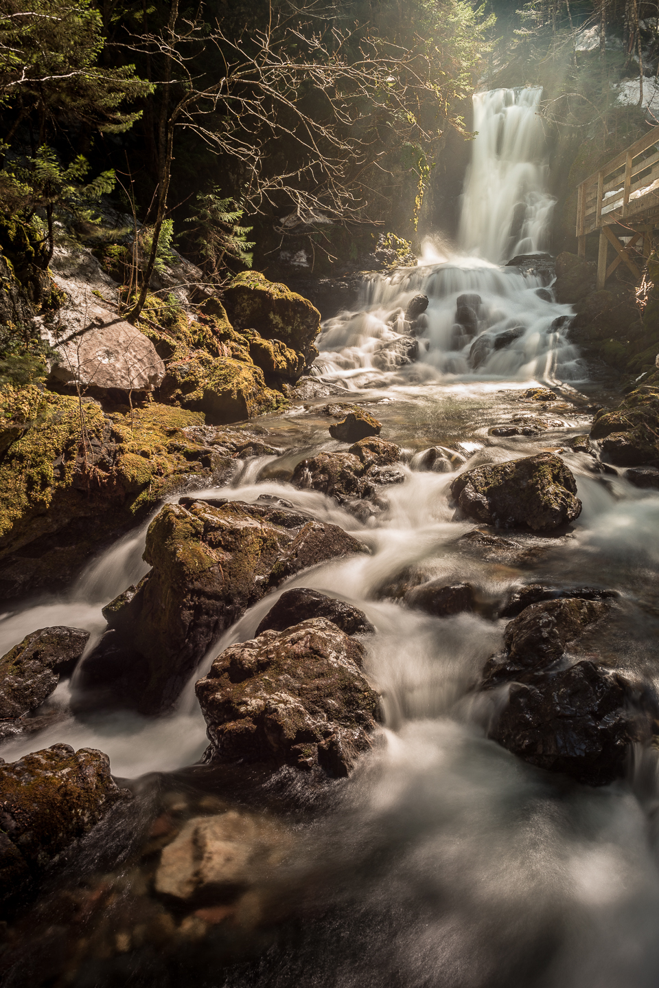 Nigel Fearon Photography | Fundy National Park Waterfalls-4.jpg