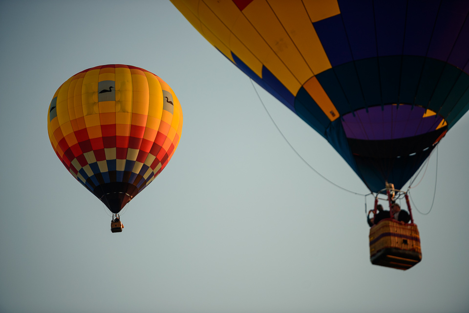 Nigel Fearon Photography | Sussex Balloon Fiesta (17 of 32).jpg