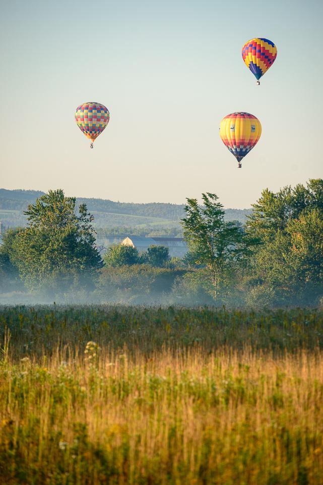 Nigel Fearon Photography | Sussex Balloon Fiesta (24 of 32).jpg