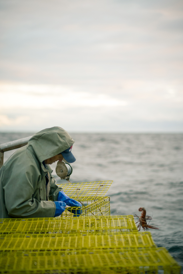Nigel Fearon Photography | Lobster Fishing-9.jpg
