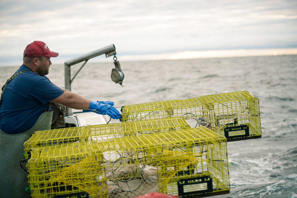 Nigel Fearon Photography | Lobster Fishing-12.jpg