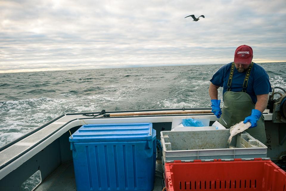 Nigel Fearon Photography | Lobster Fishing-16.jpg