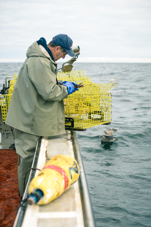 Nigel Fearon Photography | Lobster Fishing-21.jpg