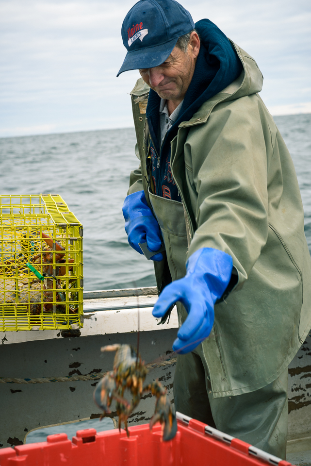 Nigel Fearon Photography | Lobster Fishing-26.jpg
