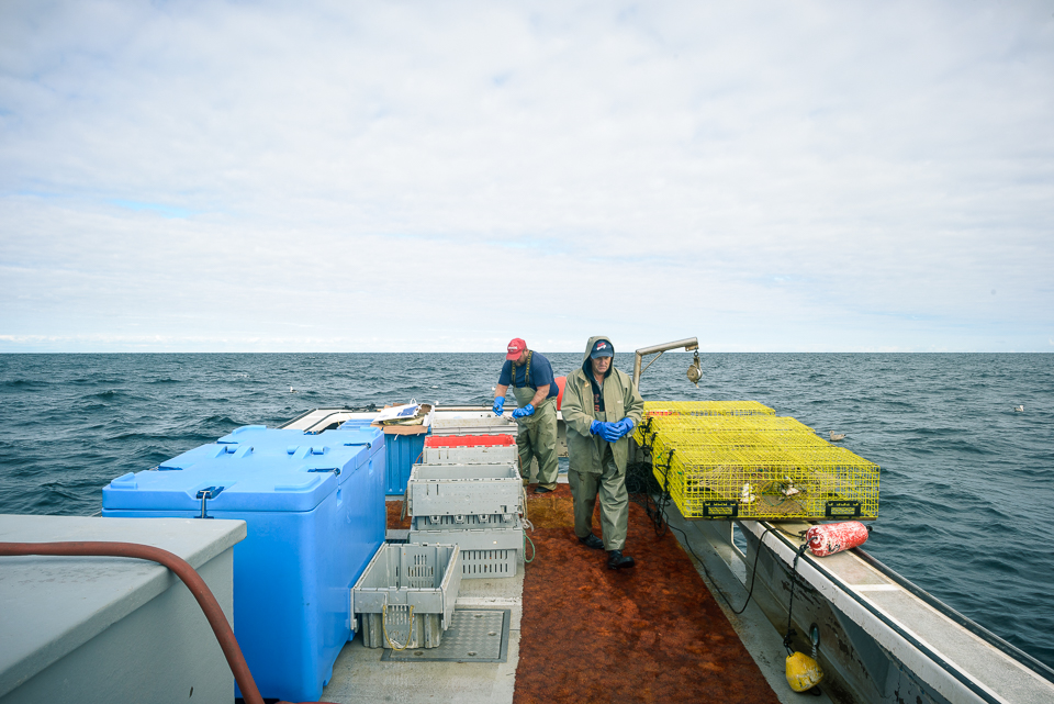 Nigel Fearon Photography | Lobster Fishing-34.jpg