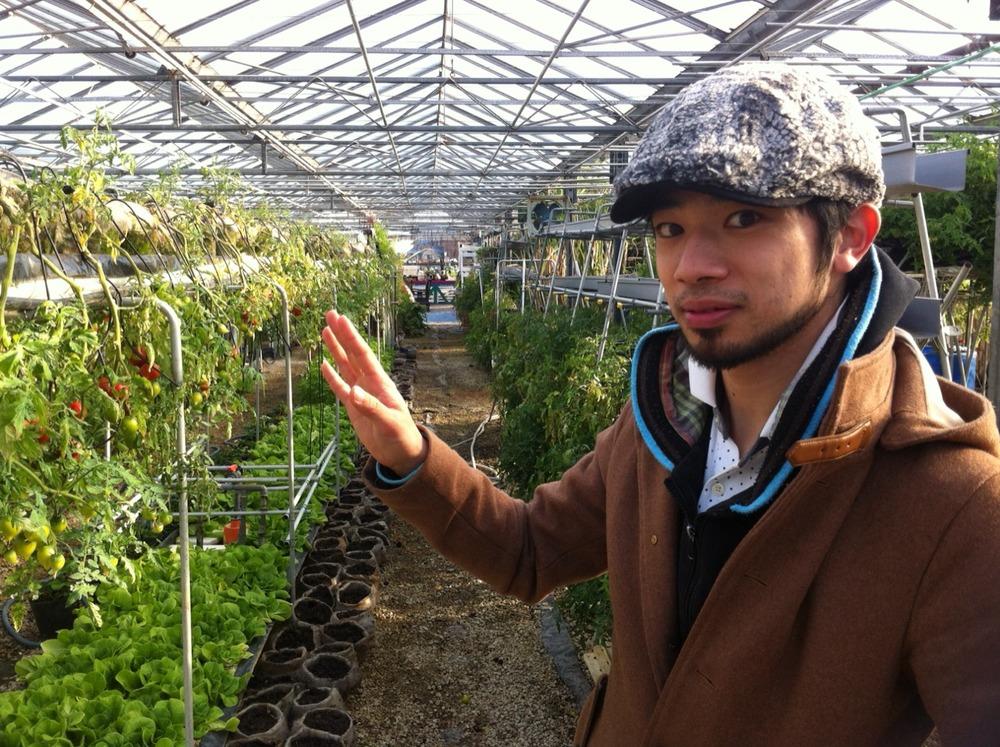野菜が空中を飾ってるのは見た目にも楽しいですよね!!