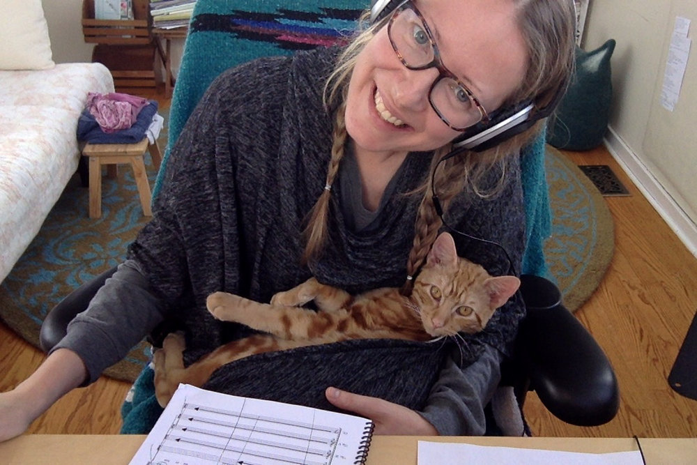 composing with cat, 2016