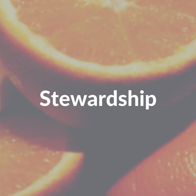 Stewardship Block.jpg