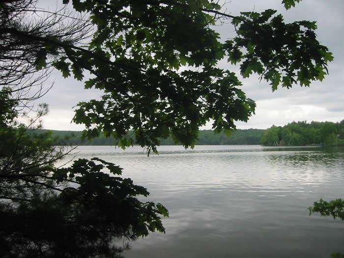 View of Webber Pond from Vassalboro Wildlife Habitat