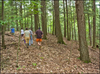 Hikers walk through the beautiful  hemlock forest at Small-Burnham Conservation Area. Photo: Jane Davis