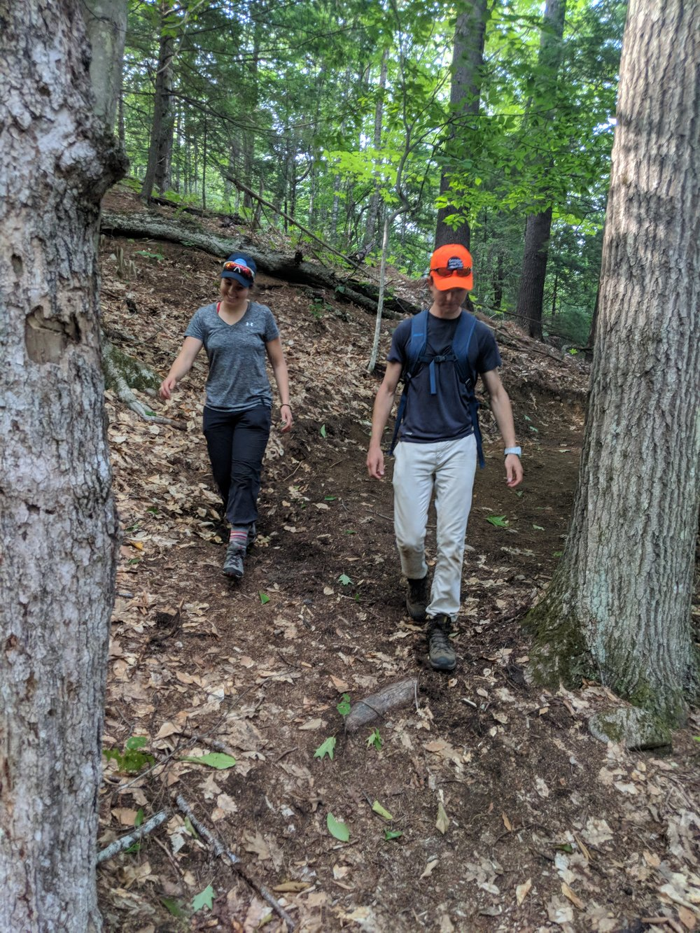 Summer 2018 interns on the new trail at the Ezra Smith Wildlife Conservation Area in Mount Vernon.