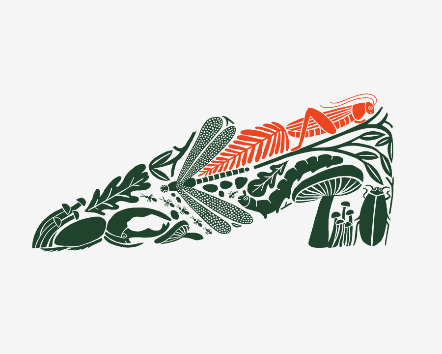 Shoe_Resized.jpg