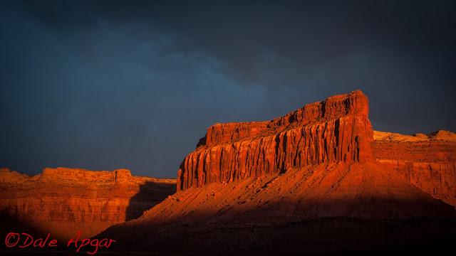 apgar_desert_2013-7.jpg