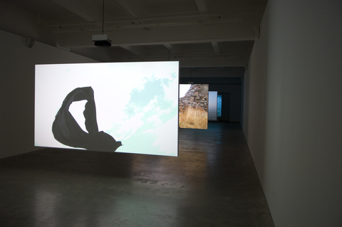Open Spaces, Anna Schwartz Gallery, 2011