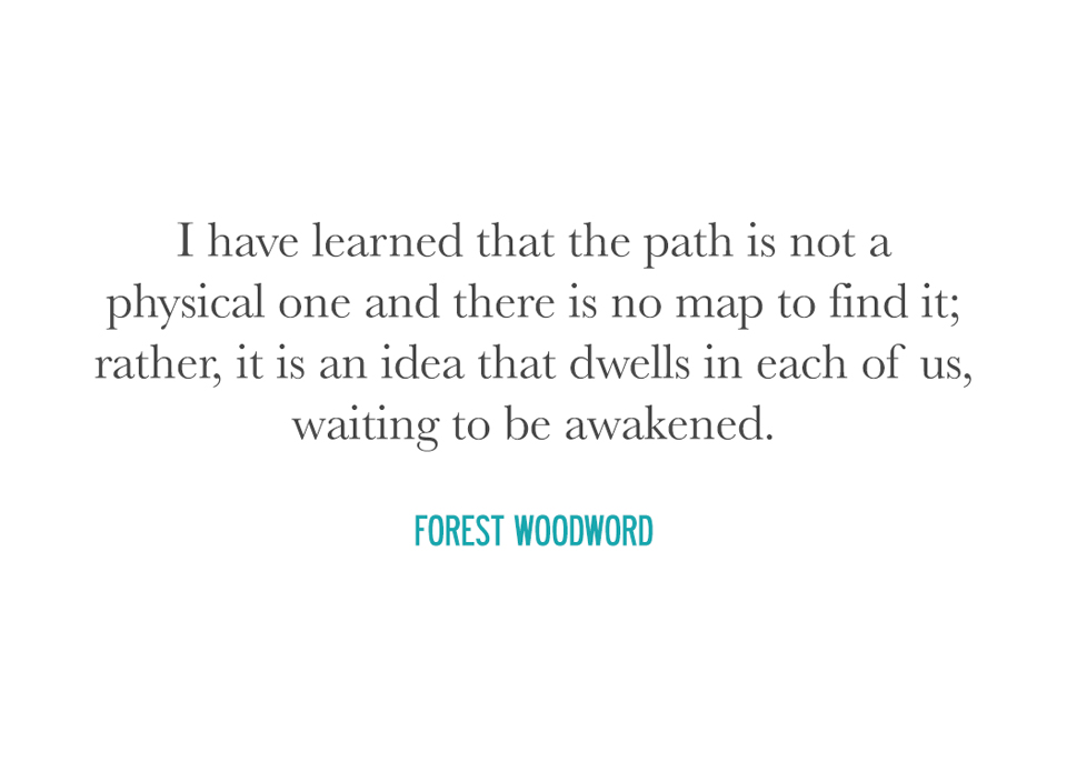 woodword.jpg