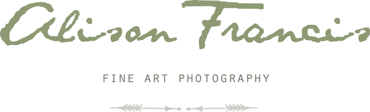 Alison Francis Fine Art photography
