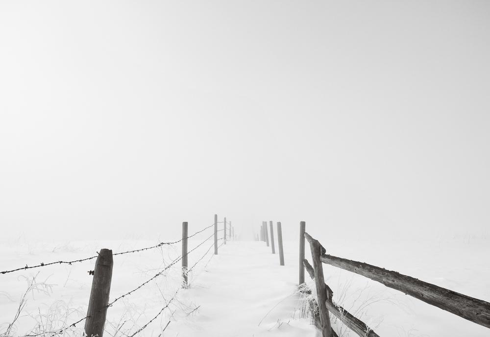 fence-alleyB&W0-fltresize.jpg