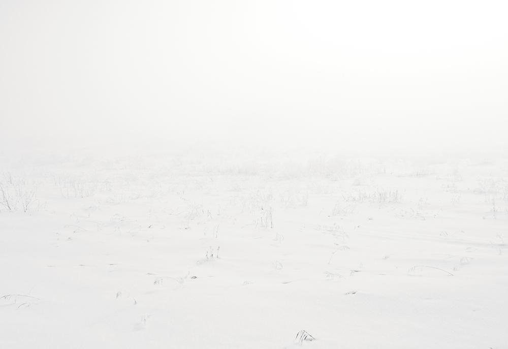 snow-scape#3-flt.jpg