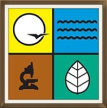 DNR-logo2.jpg