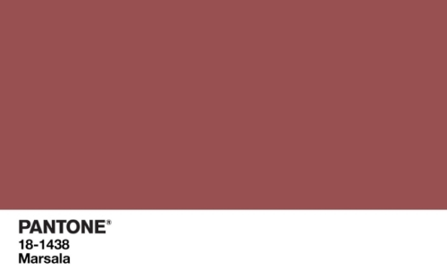 Marsala_wallpaper_Pantone_Color_of_the_Year_2015-1920x1200.jpg