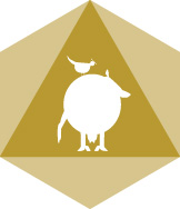 logodr-cowsquare2.jpg