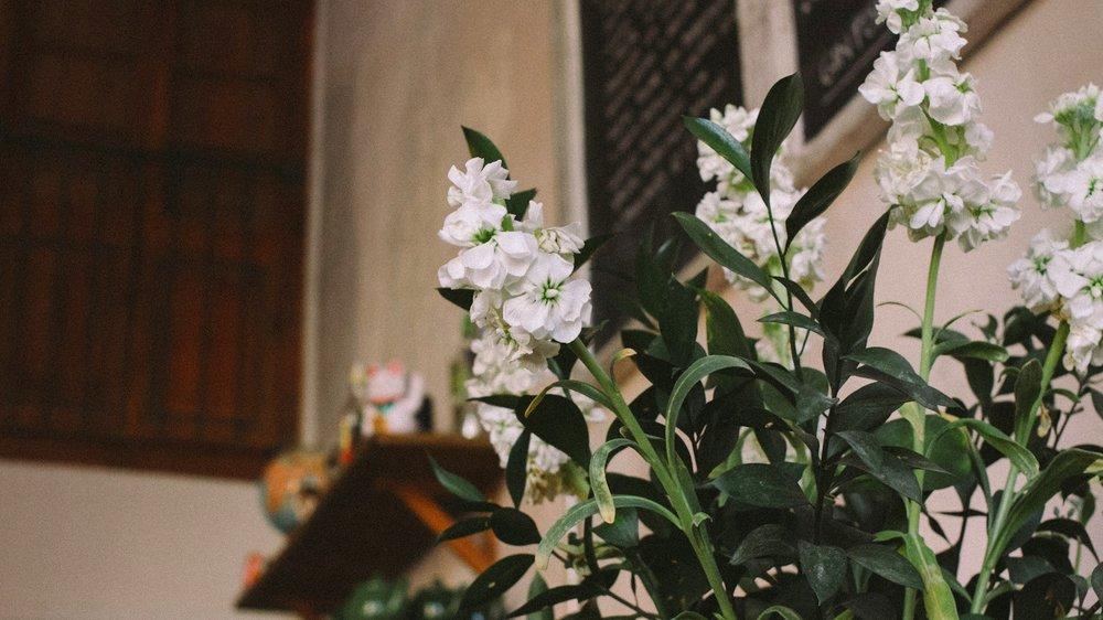 130209_granja petitbo_photoshoot_049.jpg