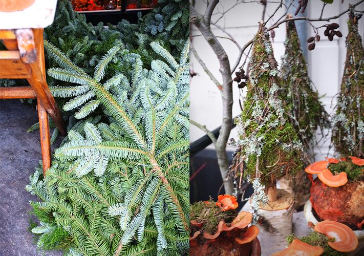 A.P Bloem, Christmas, Kerst, Florist, Tree, Kerstboom, Arrangement, Amsterdam, Bloem, Bloemist, Bloemenwinkel, Hydrangea, Kerstboom
