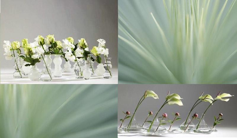 A.P Bloem Florist Amsterdam Bloemist Bloemenwinkel Flowers Florist Amsterdam Kerkstraat bud vase glass stem vaasje