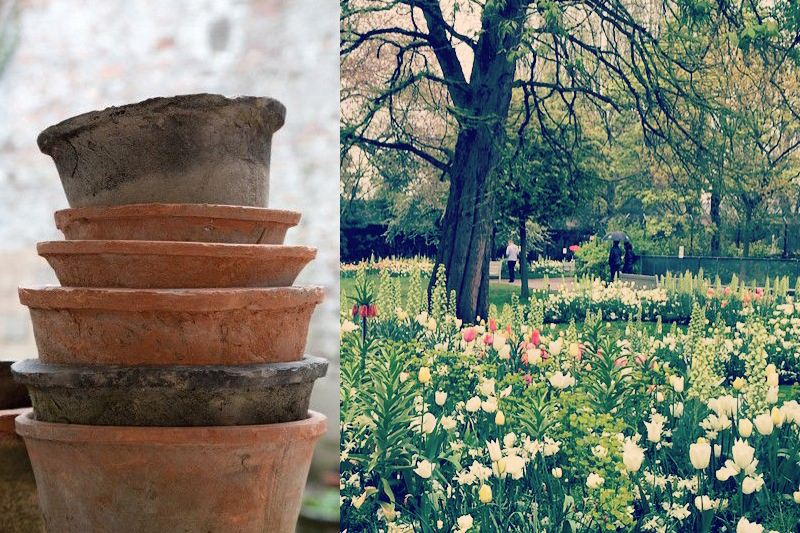 A.P Bloem Florist Amsterdam Bloemist Bloemenwinkel Flowers Florist Amsterdam Kerkstraat pots pottery garden