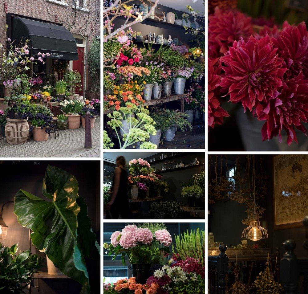 A.P Bloem Florist Bloemist Amsterdam favourite florists amsterdam Kerkstraat bloemenwinkel flower shop the shopkeepers the flower shopkeepers