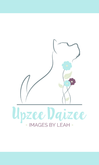 Upzee Daizee Business Card Front