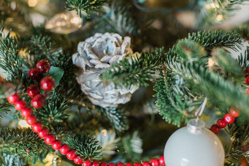 2016 Christmas Tree 5.jpg