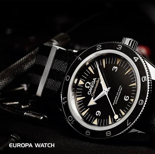 Europa Watch.jpg
