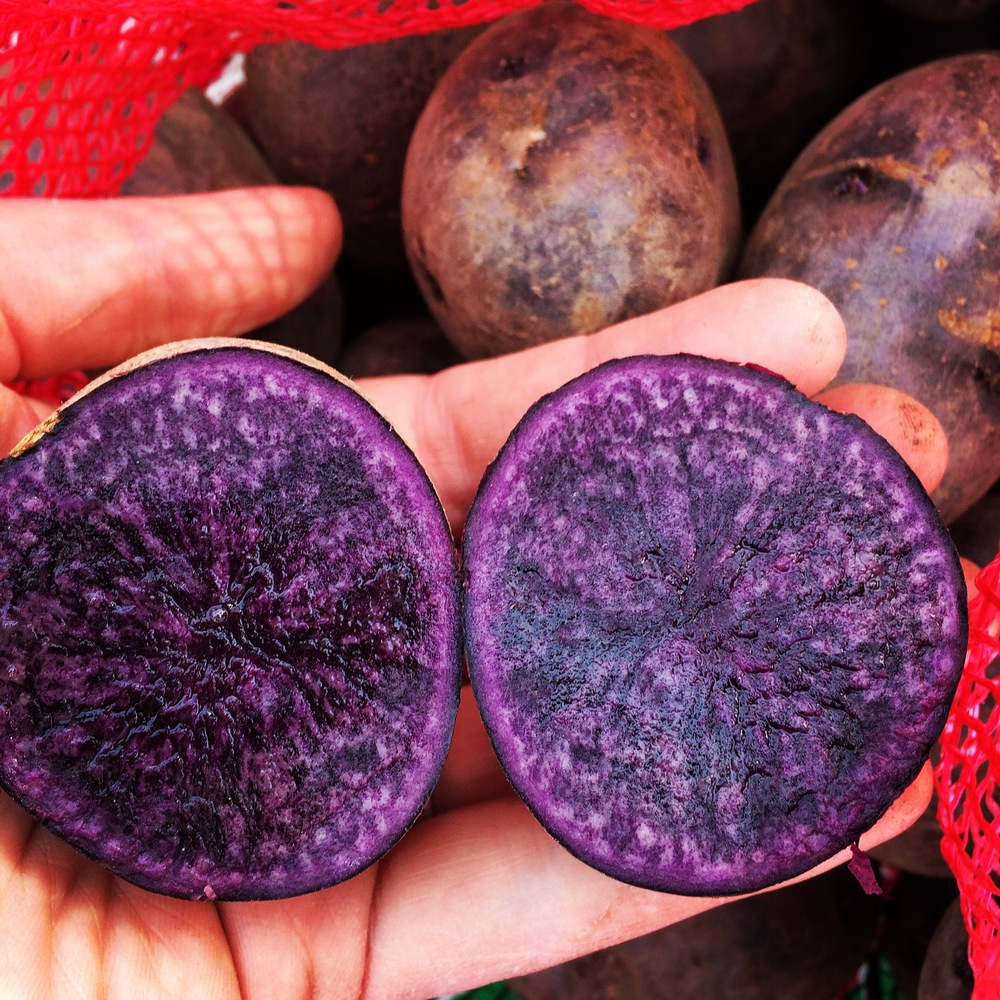 Oh, potatoes, don't worry. We still love you! (Perfect purple spuds from Vern's Veggies!)